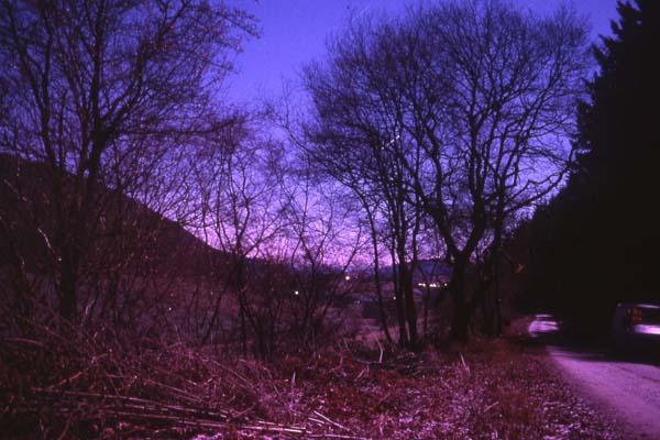 Panpunton Hill, Knighton,Mid-Wales