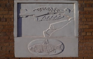 Concrete Fish 3