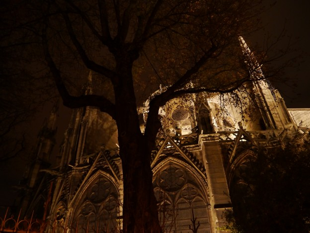 Notre Dame-night